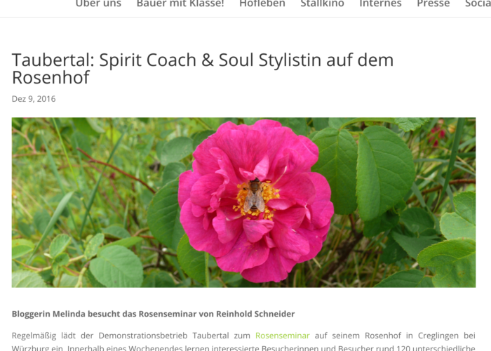 bio-live-erleben, bio-live-erleben.de, online PR für changelicious, changelicious in der Presse, PR